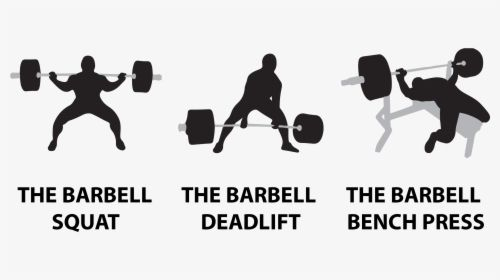 Squat Bench Deadlift Logo, HD Png Descargar | Squat bench deadlift, Deadlift,  Squats