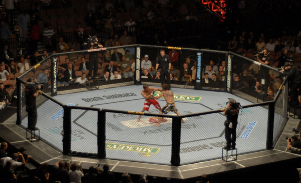How Many Rounds Are In an MMA Fight?